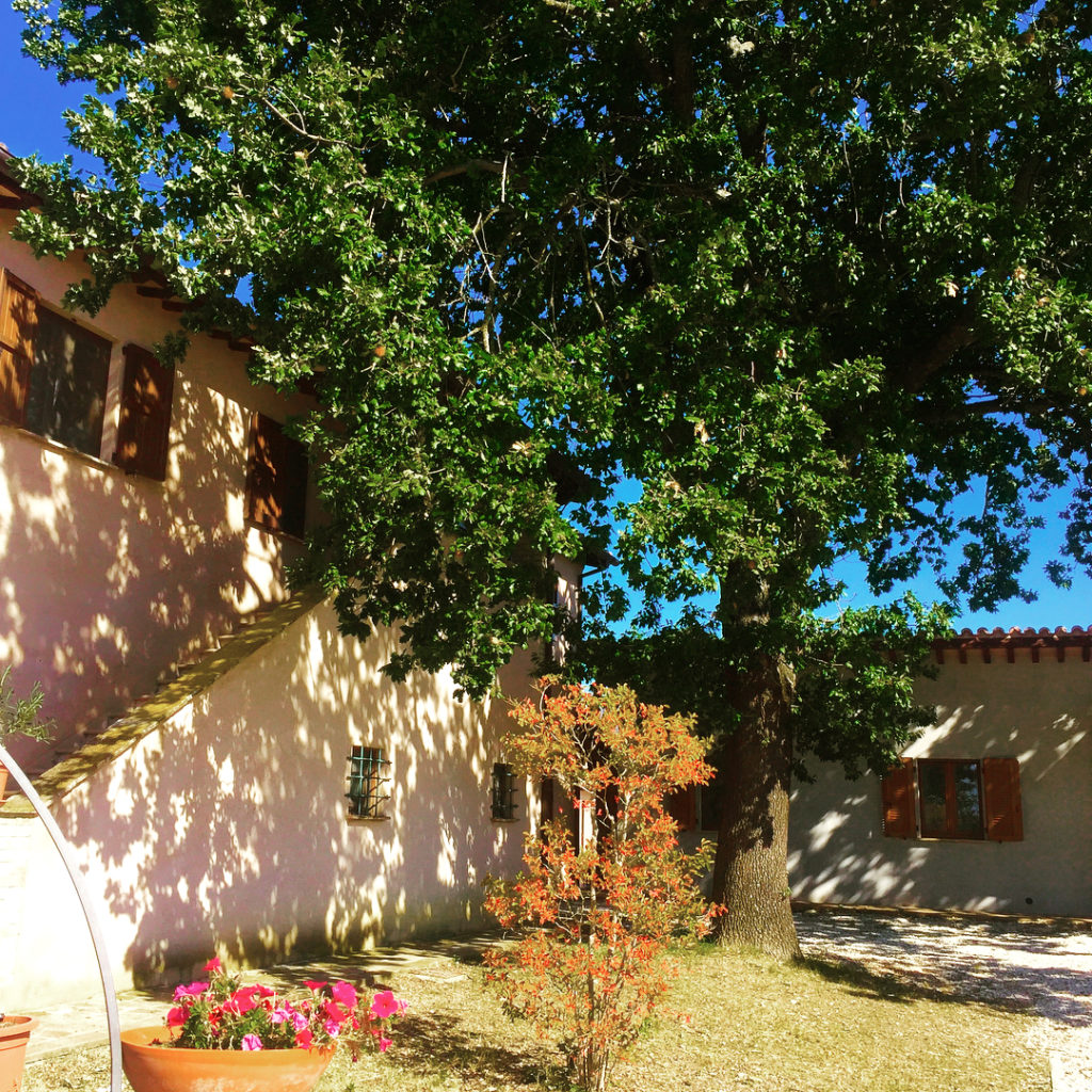 Dormire nel borgo di Spello - Una foto piena di colori del giardino di un casale umbro